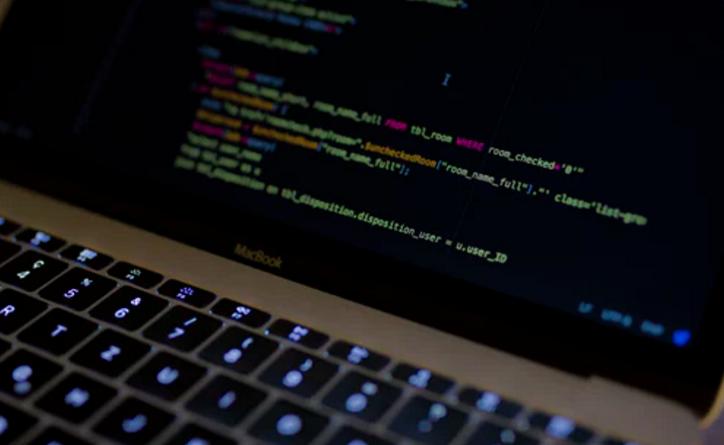 studying web development